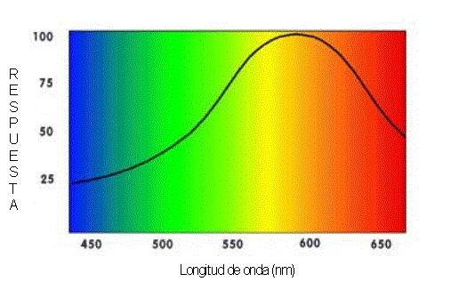 longitud-de-onda-de-luz